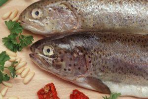 nachhaltiger-fisch